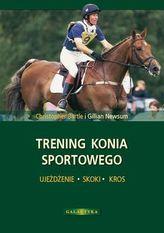 Trening konia sportowego. Ujeżdżenie, skoki, kros