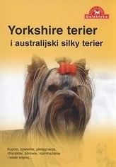 Yorkshire terier i australijski silky terier