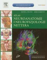 Atlas neuroanatomii i neurofizjologii Nettera wyd.II