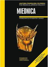 Miednica. Anatomia prawidłowa człowieka.Podręcznik dla studentów i lekarzy