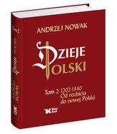 Dzieje Polski. Tom 2. Od rozbicia do nowej Polski