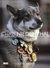 Chris Niedenthal. Wybrane fotografie 1973-1989