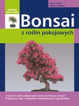 Bonsai z roślin pokojowych. Rośliny moje hobby.