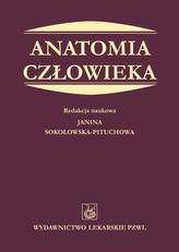 Anatomia człowieka. Podręcznik dla studentów medycyny