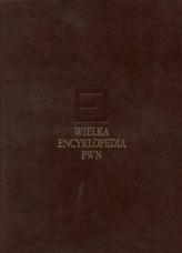 Wielka encyklopedia PWN Tom 3