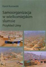 Samoorganizacja w wielkomiejskim slumsie