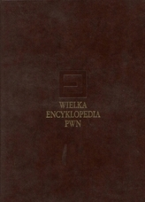 Wielka encyklopedia PWN Tom 2