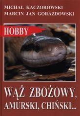 Wąż zbożowy, amurski, chiński…