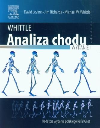 Whittle Analiza chodu