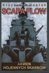 Scapa Flow. Akwen wojennych skarbów