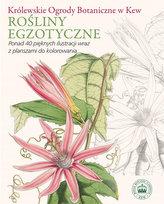 Rośliny egzotyczne.  Królewskie Ogrody Botaniczne w Kew