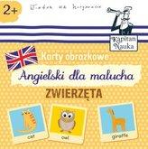 Karty obrazkowe Angielski dla malucha Zwierzęta