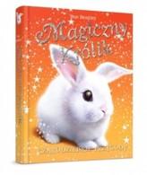 Magiczny królik. Czarodziejskie przygody