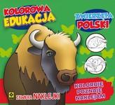 Kolorowa edukacja. Zwierzęta Polski