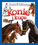 Baza faktów: Konie i kuce