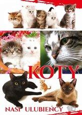 Koty. Nasi ulubieńcy
