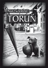 Niezwykły Toruń