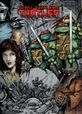 Teenage Mutant Ninja Turtles The Ultimate Collection Volume 1