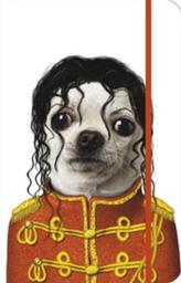 Notes s gumičkou Michael Jackson